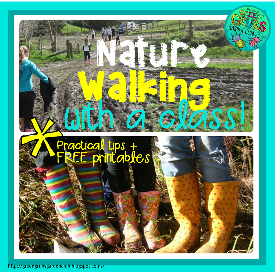Nature walking & exploring with a class