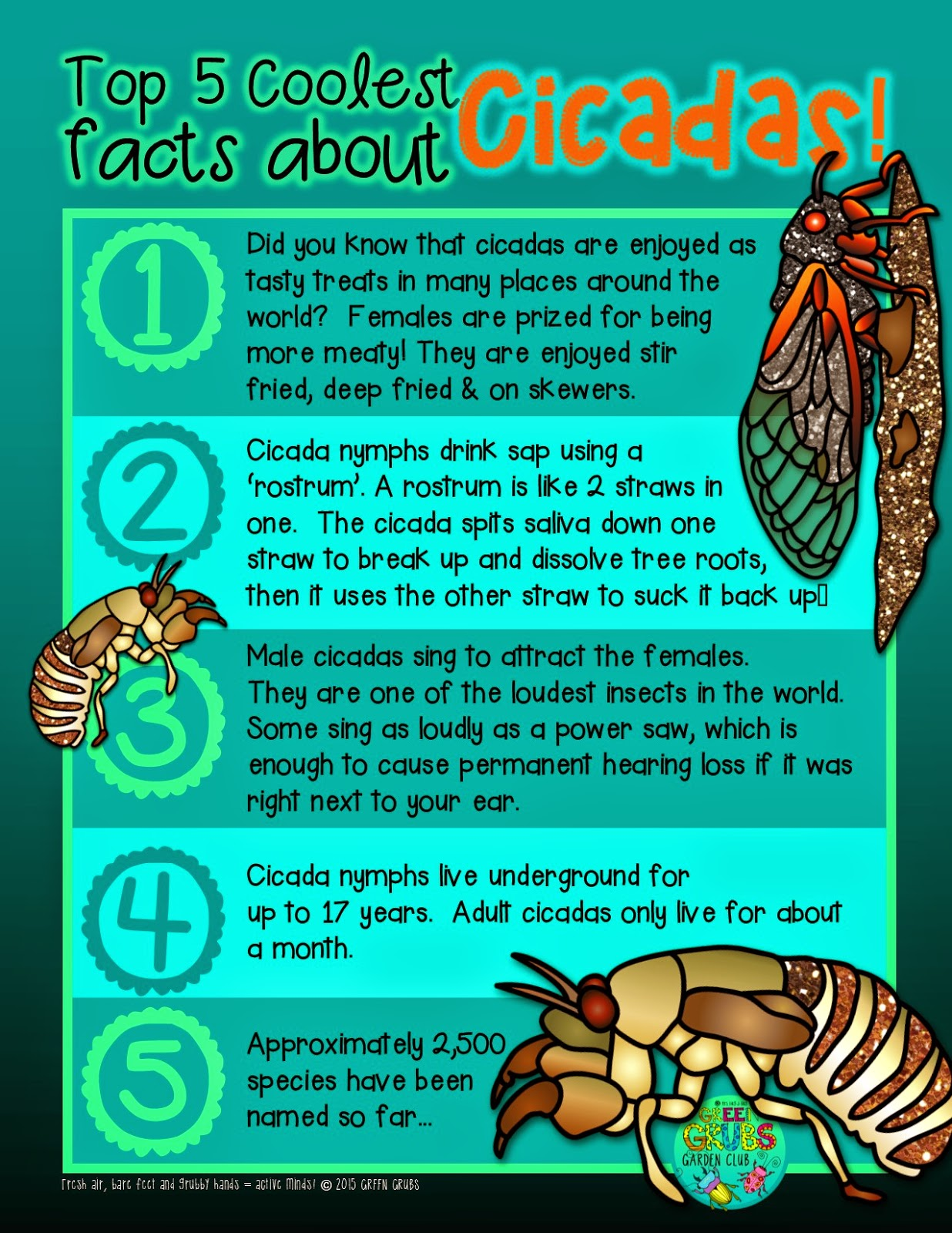 Top 5 Coolest facts about Cicadas {+ a free printable!}
