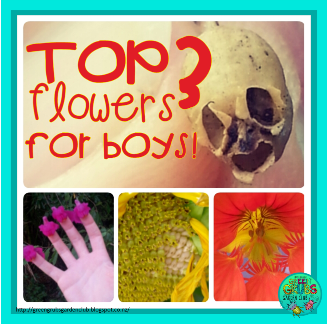 Top 3 flowers to grow for BOYS! {why they'll love them and what to do with them}