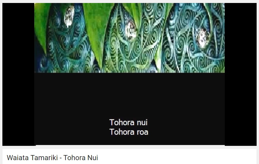Tohora Nui – Big Whale {Song Lyrics Freebie!}