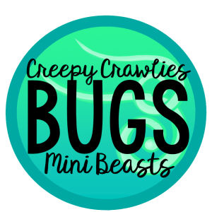 Creepy Crawlies, Bugs, Mini Beasts